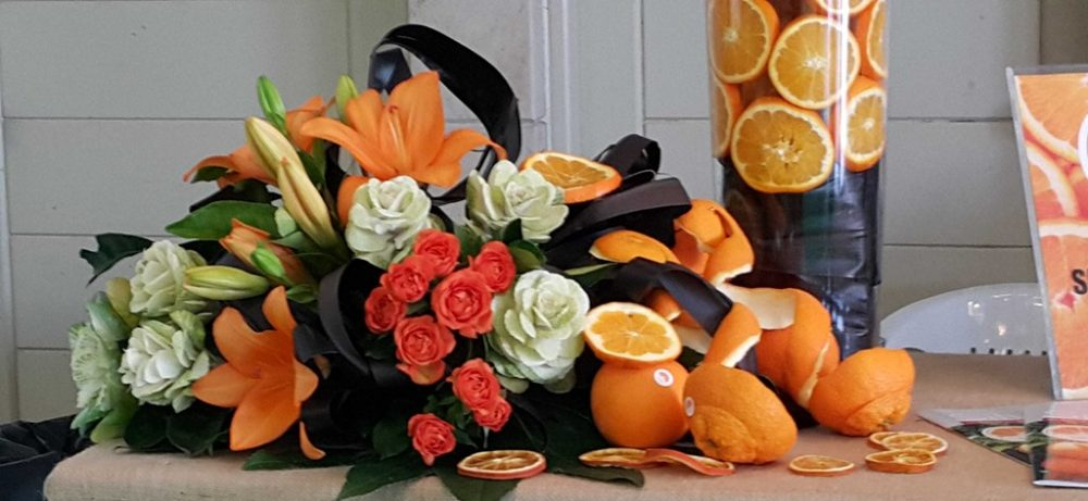 www.corenrina.nl/wordpress